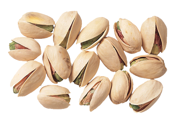 pistacchi